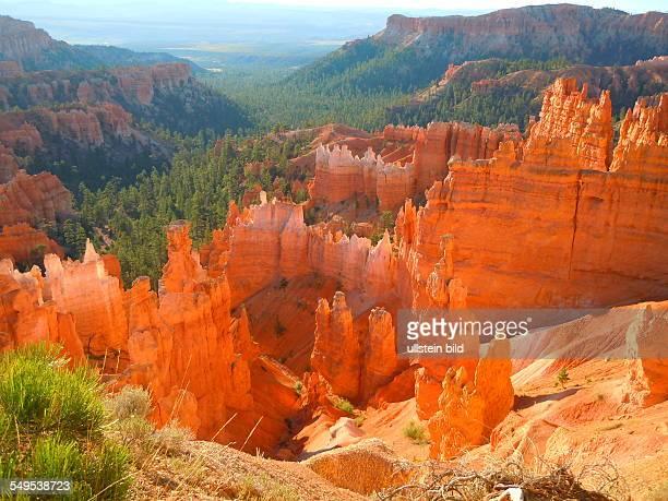 Die Morgensonne scheint auf die Felsengebilde im Bryce Canyon Nationalpark aufgenommen am 20 August 2012