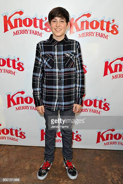 Diego Velazquez attends Knott's Merry Farm Countdown to Christmas Tree Lighting at Knott's Berry Farm on December 5 2015 in Buena Park California