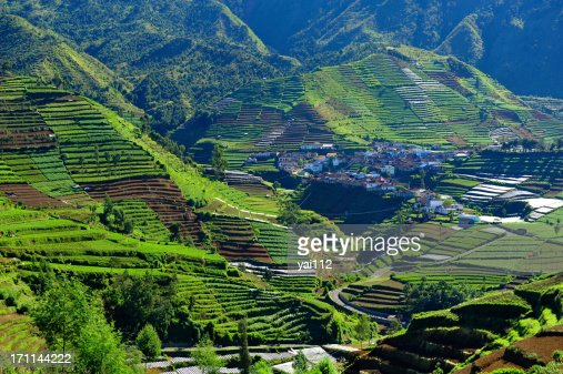 Dieng Plateau village