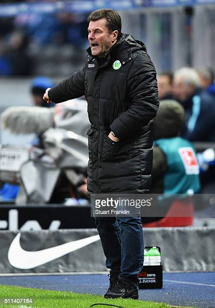 Dieter Hecking of Wolfsburg shouts during the Bundesliga match between Hertha BSC and VfL Wolfsburg at Olympiastadion on February 20 2016 in Berlin...