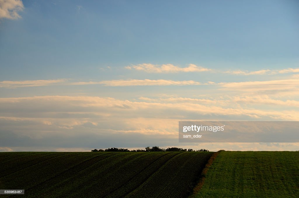 different fields : Stock Photo