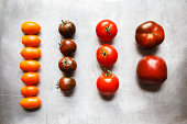 Different tomatoes, Zebrino, Ebeno, Devotion and yellow cherry tomatoes