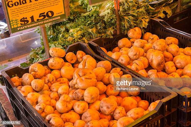 Different varieties of local nonGMO potatoes at the Union Square Greenmarket in New York on Saturday November 8 2014 A recent study suggests that...