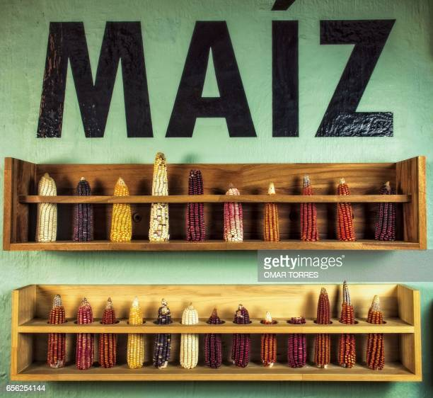 Different varieties of Mexican corn are displayed at 'Zandunga' restaurant in Oaxaca city Mexico on March 01 2017 Mexico has identified a potential...