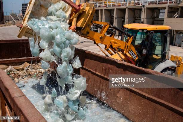 TOPSHOT A digger drops hundreds of jellyfish crated away after being fished out of the cooling water supply at a power plant in the Israeli...