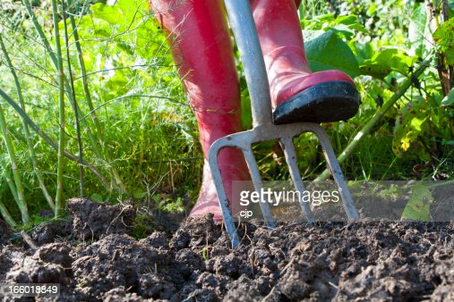 Digging an Overgrown Vegetable Garden