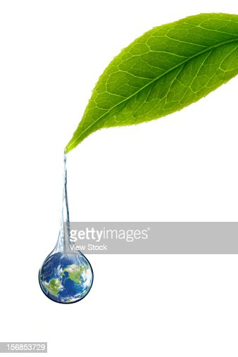 Digital composite of green leaf and earth : Stock Photo