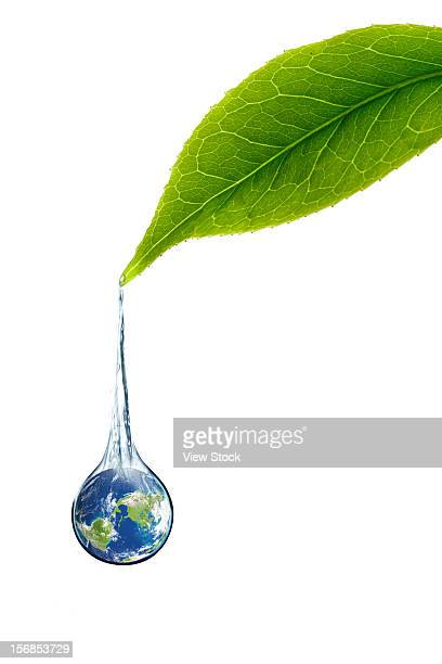 Digital composite of green leaf and earth