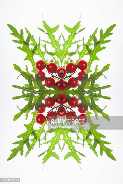 A digital composite of mirrored images of red currants and arugula leaves