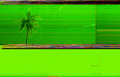 Digital glitch background and coconut tree