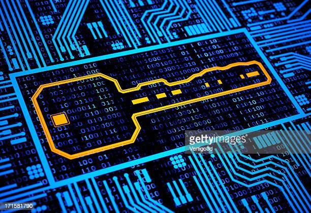 Digital security key