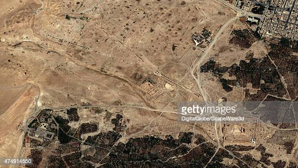 DigitalGlobe imagery of the Palmyra ruins collected on August 29th 2014 An oasis in the Syrian desert northeast of Damascus Palmyra contains the...