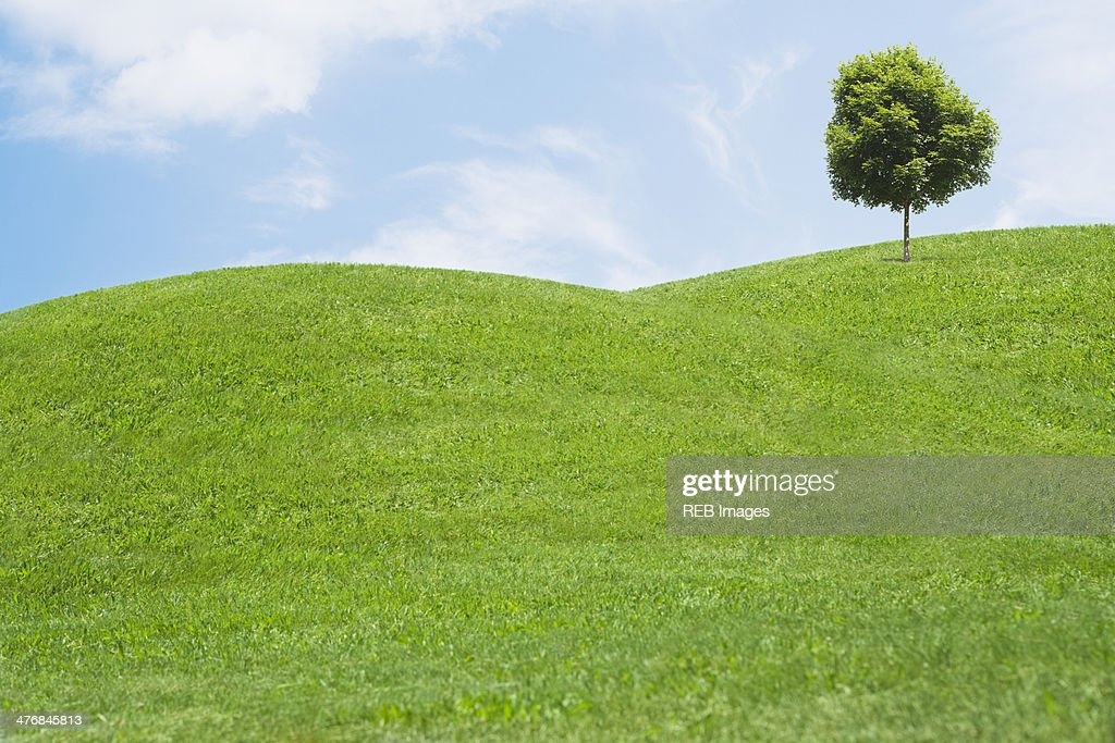 Digitally generated image of grassy hills and tree