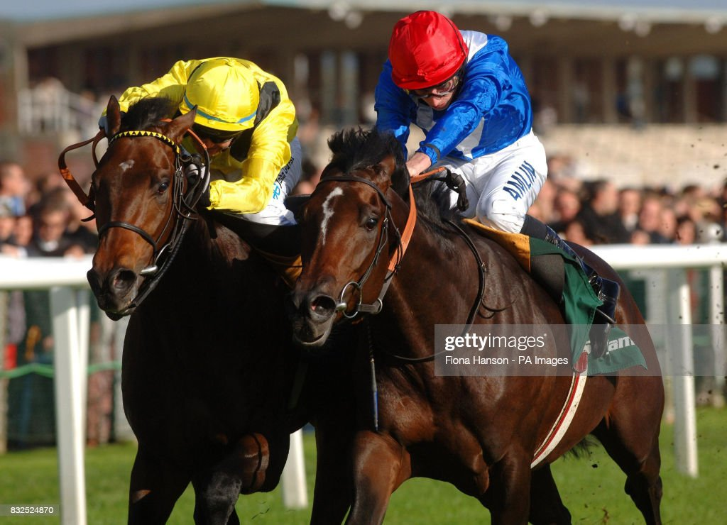 Dijeerr and jockey Philip Robinson (left) wins the Stan James Horris Hill Stakes from Mythical Kid and jockey Ryan Moore at Newbury Racecourse.