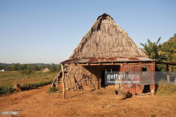 Dilapidated barn with thatched roof