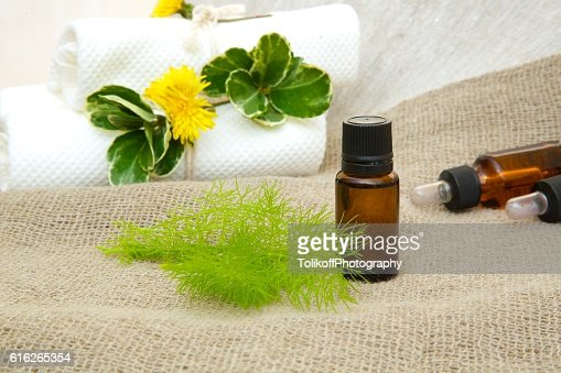 Dill essential oil : Stock Photo
