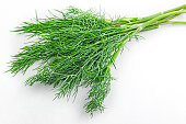Dill weed. Fresh dill greens. Fennel isolated on white background. Bright colors.