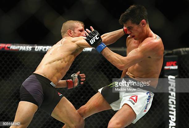 J Dillashaw punches Dominick Cruz in their bantamweight bout during UFC Fight Night 81 at TD Banknorth Garden on January 17 2016 in Boston...