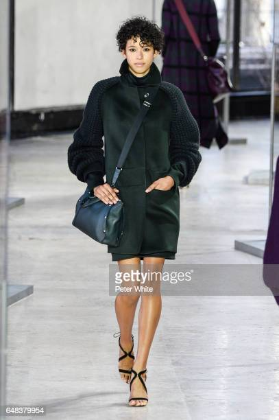 Dilone walks the runway during the Akris show as part of the Paris Fashion Week Womenswear Fall/Winter 2017/2018 on March 5 2017 in Paris France
