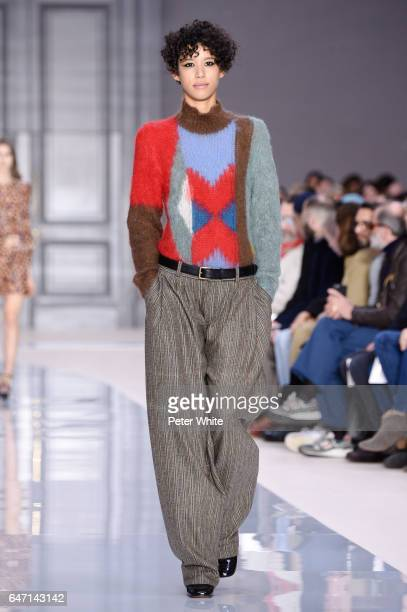 Dilone walks the runway during the Chloe show as part of the Paris Fashion Week Womenswear Fall/Winter 2017/2018 >> on March 2 2017 in Paris France
