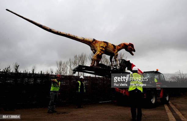 A Dilophosaurus dinosaur on its arrival at Twycross Zoo where fifteen dinosaurs are the main feature of a brand new attraction opening Easter 2013...