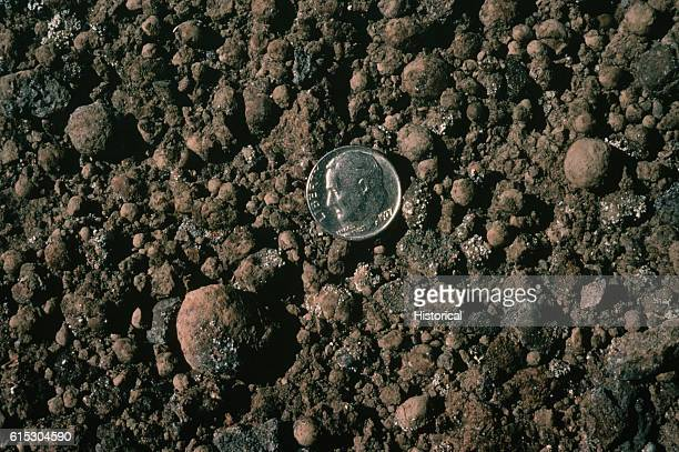 A dime shows the size of accretionary lapilli formed by ash that cements itself around water droplets Hawaii | Location Kau Desert Hawaii USA
