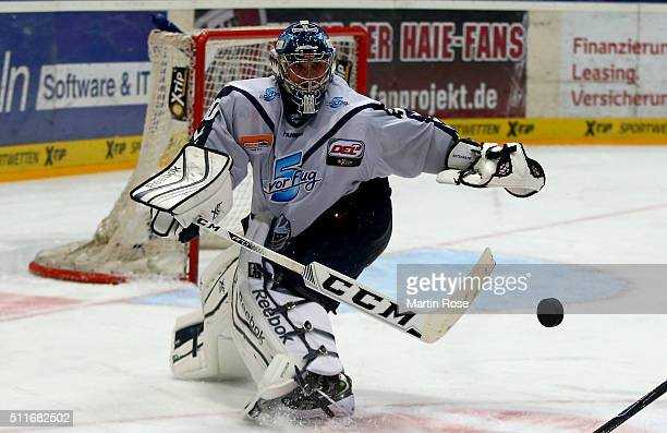 Dimitrij Kotschnew goaltender of Hamburg Freezers plays the puck during the DEL Ice Hockey match between Koelner Haie and Hamburg Freezers at Lanxess...