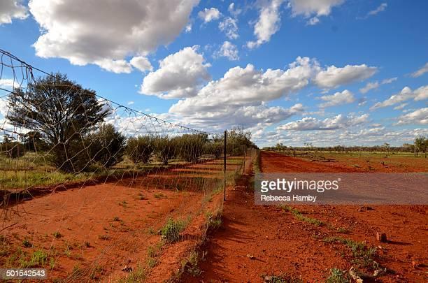 Dingo/dog fence (near Thargomindah)