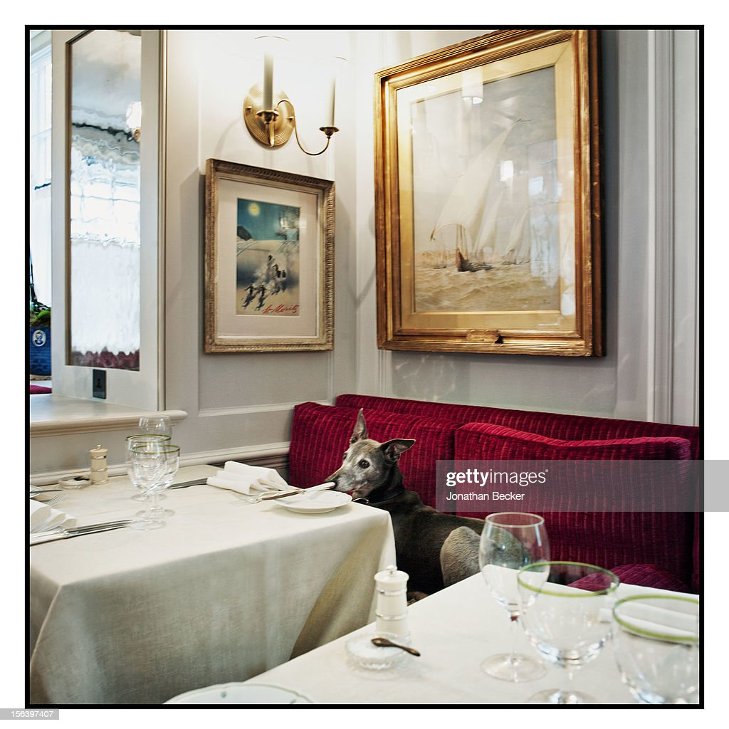 A dining room is photographed at 5 Hertford Street, which is the home of nightclub Loulou's for Vanity Fair Magazine on June 11, 2012 in London, England.