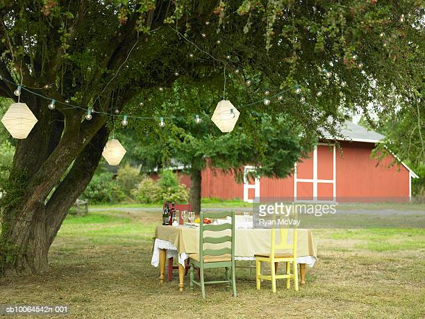 Dining table in yard with paper lanterns hanging from tree