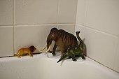 Dinosaur Extinction Shower