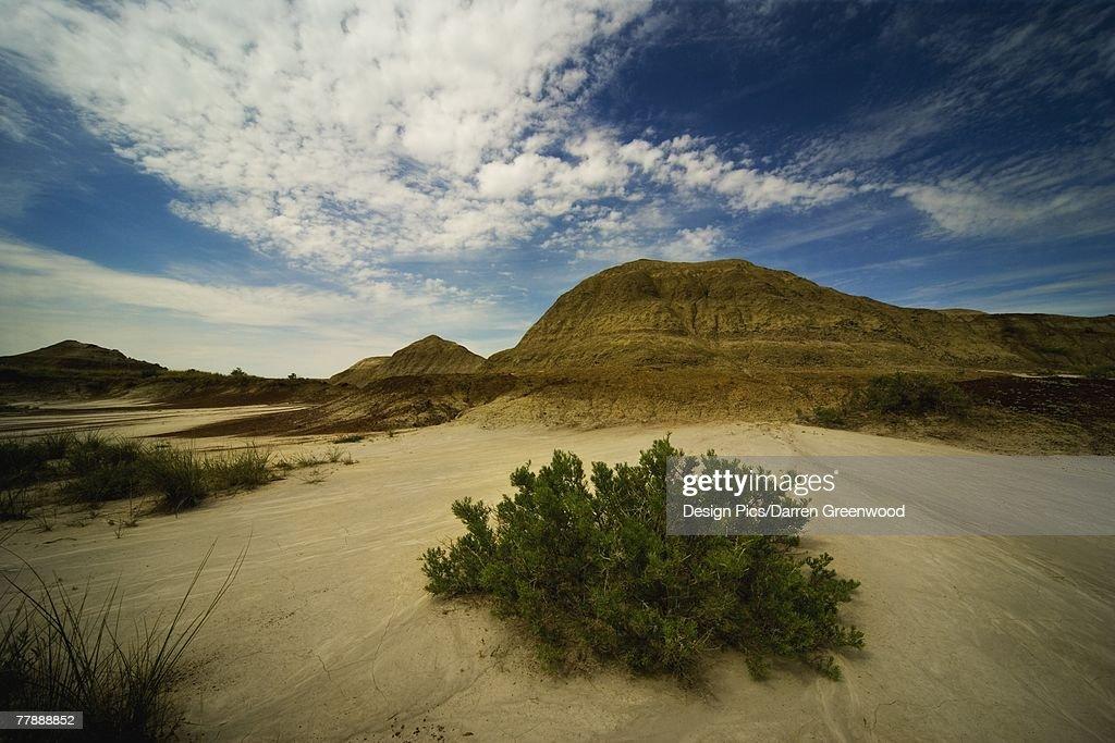 'Dinosaur Provincial Park, Alberta' : Stock Photo