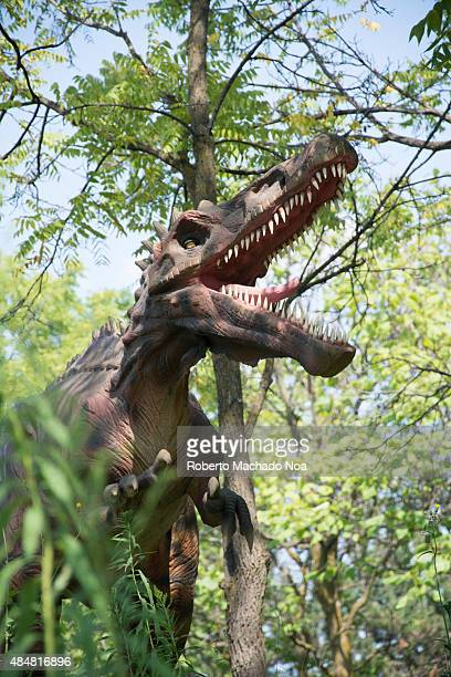 Dinosaurs Alive and exhibition in Canada's Wonderland featuring the Spinosaurus The Spinosaurus Aegyptiacus is a genus of theropod dinosaur that...