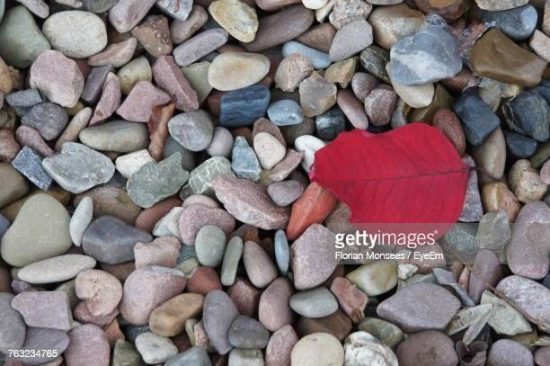 Directly Above Shot Of Autumn Leaf On Pebbles