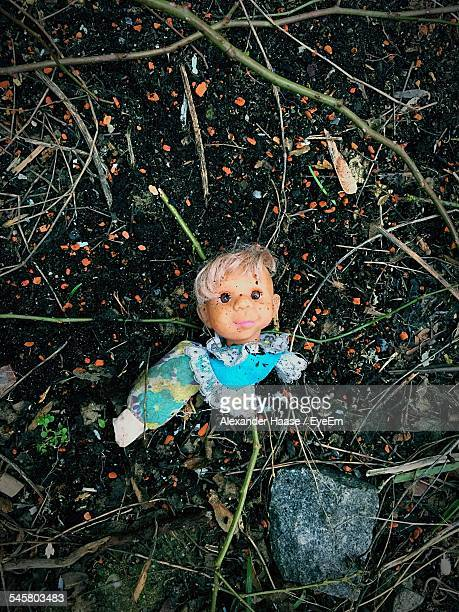 Directly Above Shot Of Broken Doll On Field