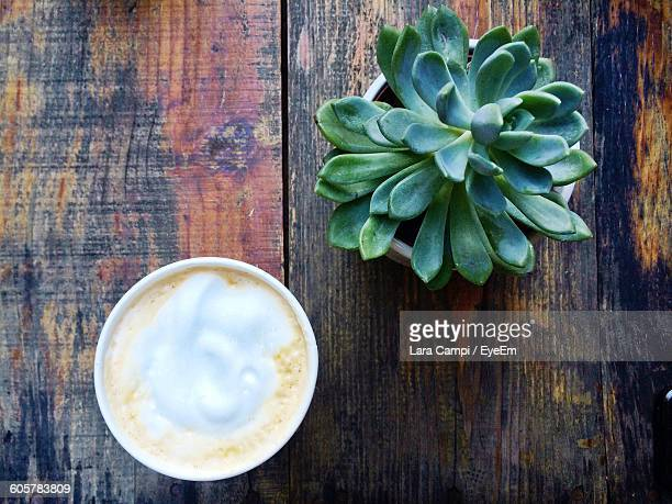 Directly Above Shot Of Coffee And Succulent Potted Plant On Table