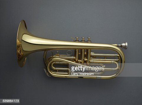 Directly above shot of cornet against gray background