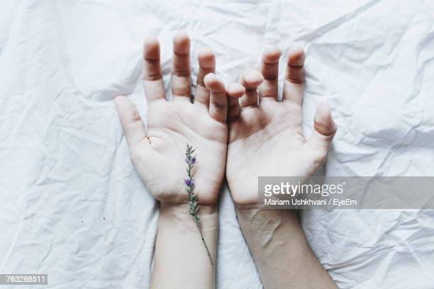 Directly Above Shot Of Couple Hands On Bed
