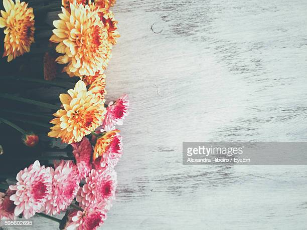 Directly Above Shot Of Flowers On Table