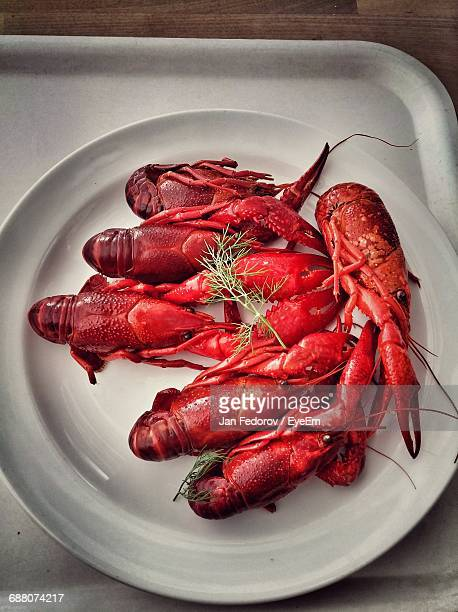 Directly Above Shot Of Lobsters Served In Plate