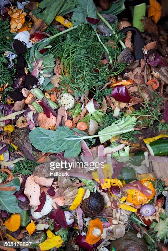 Directly above shot of vegetable garbage