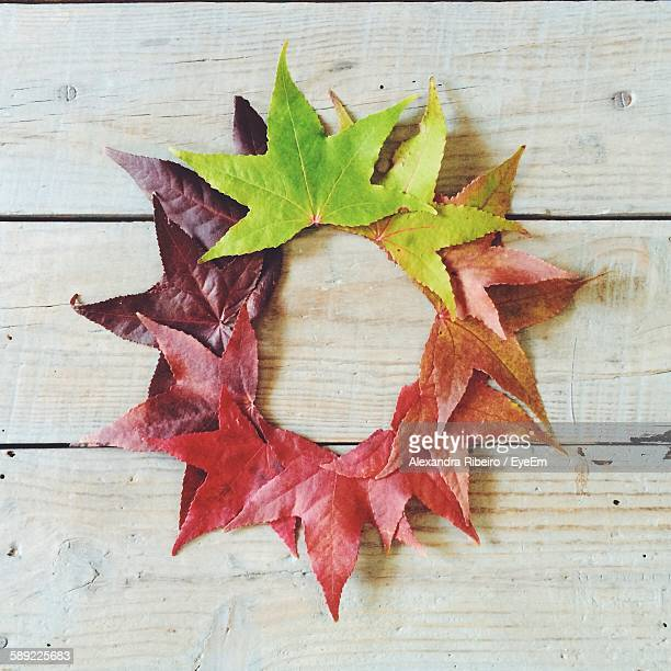 Directly Above View Of Leaves Arranged In Circle On Table