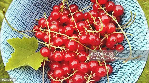 Directly Above View Of Red Currants In Container