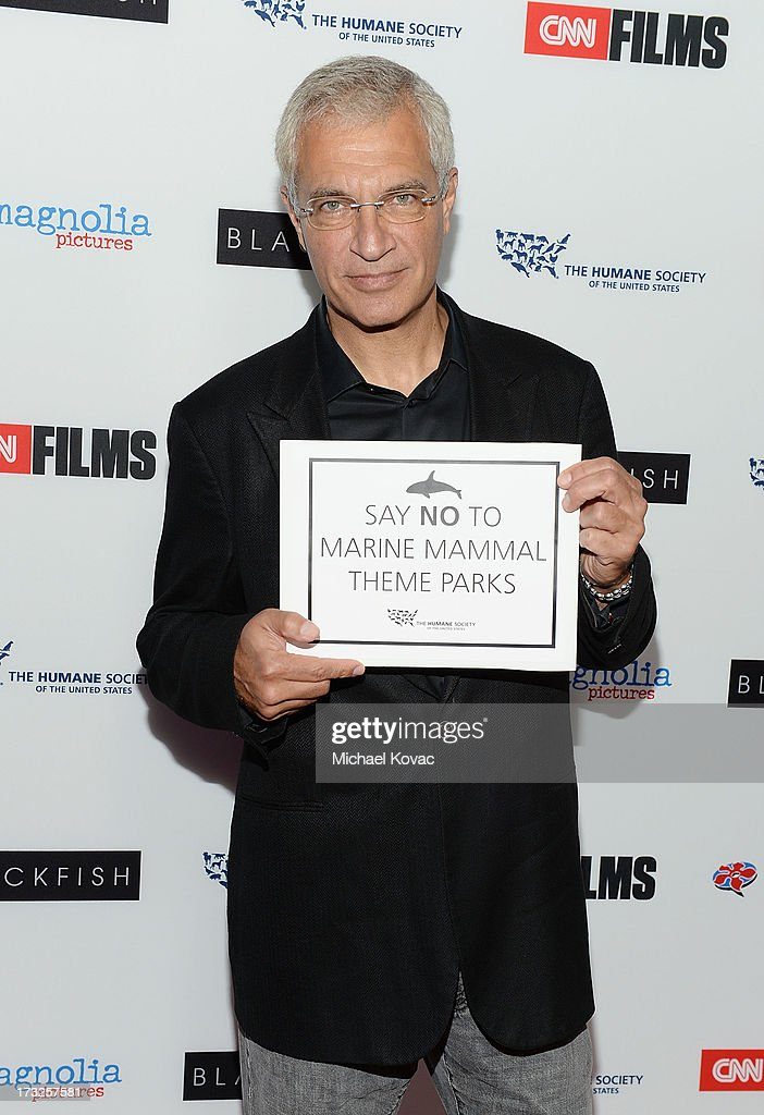 Director <a gi-track='captionPersonalityLinkClicked' href=/galleries/search?phrase=Louie+Psihoyos&family=editorial&specificpeople=243517 ng-click='$event.stopPropagation()'>Louie Psihoyos</a> arrives at Magnolia Pictures Los Angeles Premiere of 'Blackfish' at ArcLight Cinemas on July 10, 2013 in Hollywood, California.