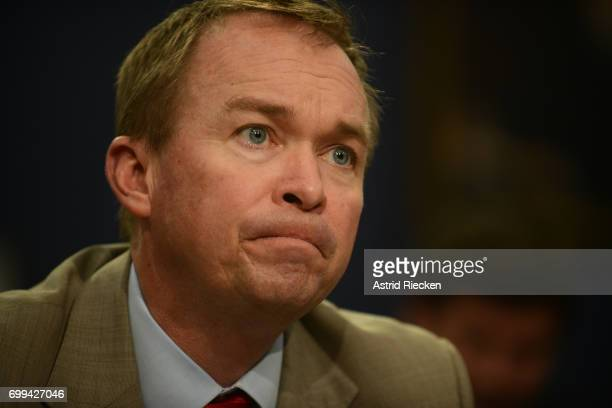 Director Mick Mulvaney testifies during a Financial Services and General Government Subcommittee hearing on the budget for the Office of Management...