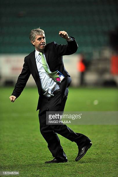 Director of the Irish team John Delaney celebrates after the team's victory during the Euro 2012 playoff soccer match between Estonia and Ireland on...