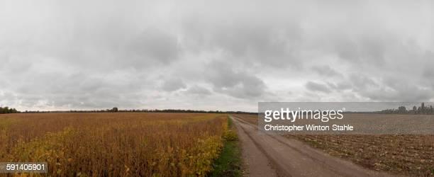 Dirt path through fields in rural landscape