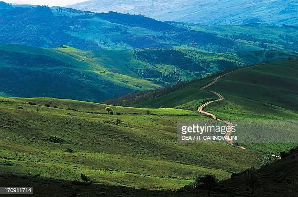 Dirt road between Cesaro' and Ancipa artificial lake Nebrodi Regional Park Sicily Italy