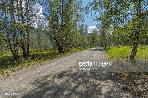 Dirt road in the mountainous Altai, Russia. : Stock Photo