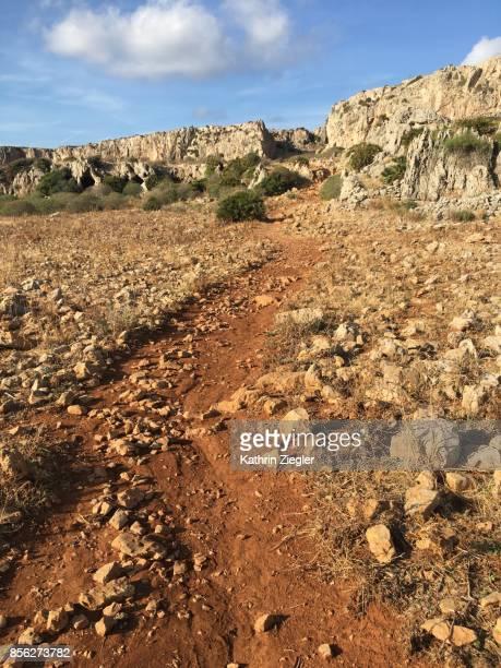 Dirt road near San Vito lo Capo, Sicily